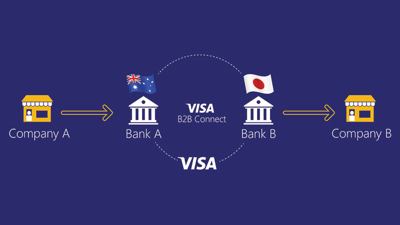 The Visa B2B Connect network. See image description for details.